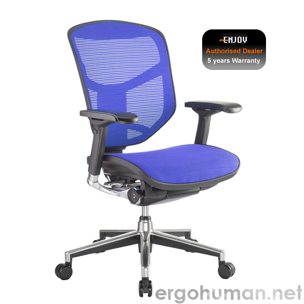 Enjoy Mesh Office Chairs